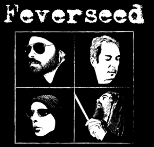 Feverssed Let Youself Down