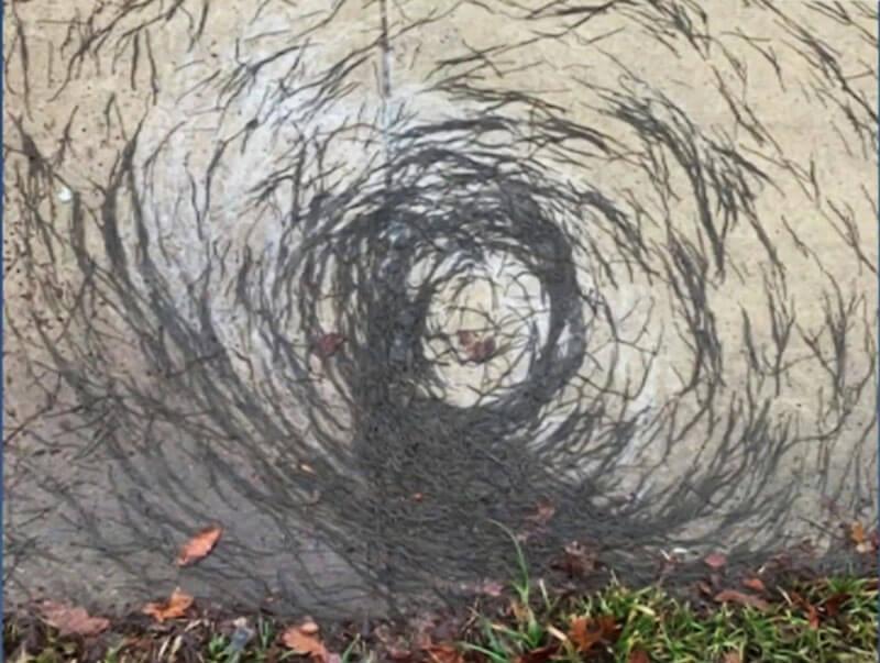 Bizarre 'worm tornado' in New Jersey