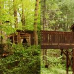 Now You Can Rent A Treehouse On Airbnb